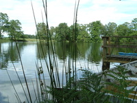 Scottish Countryside (lake)