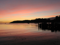 Stewart Island - Dawn