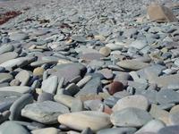 stony_photo file