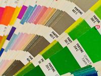 Colors by Pantone 1