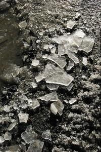 IceOntheTrack