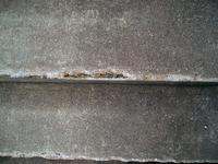 Urban Corrosion 007