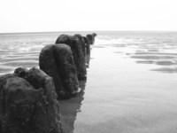 paaltjes op strand
