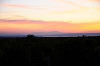 atmospheric sunset at lake neusiedlersee