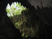 Japanese Cave@Biak