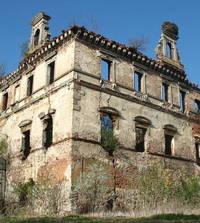 Castle's ruins