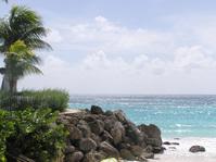 barbados shore