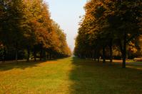 Park, Autumn