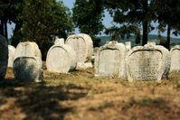 Heart shaped tombstones in Balatonudvari