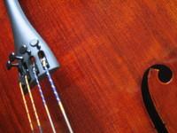 Cello Detail 1