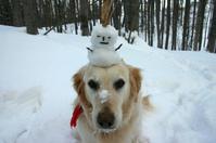 Shiro with Snowman