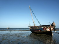 Tanzanian beach