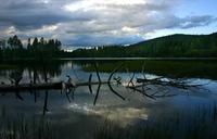 Late Night Lake