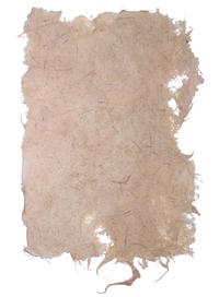 Ragged Paper Sheet