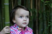 Anya in bamboo