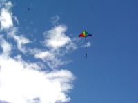 Two Kites