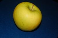Granny Smith Green Apple on Dark Free Photos 1
