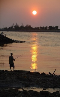 Miri Fisherman