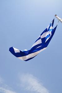 Greek Flag 4