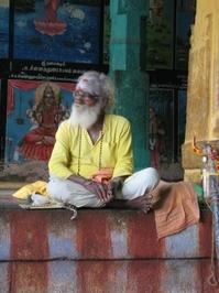 roaming sadhu