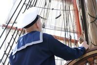 Sedov Sailing Ship 8