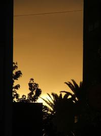 dawn in junin