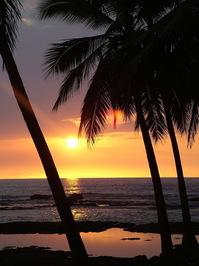 Hawaii a la Wendy