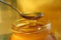 I love honey bees