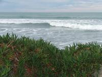 waves at sumner beach