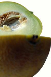 Melon serie 25