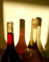 vinos 5
