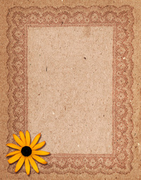 Cardboard Lace 4