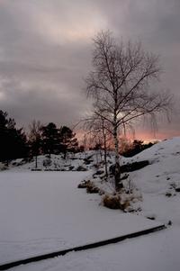 Norwegian afternoon atmosphere 3
