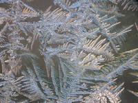 Ice sculptures 2