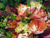 flowers serie 4