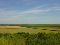 Plains and fields of Vojvodina