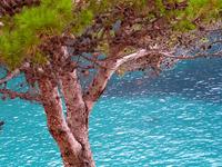 Sea in Mallorc