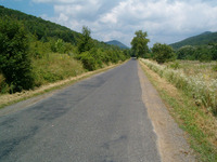 Road #5