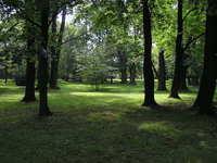 local park II
