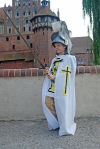 Young teutonic order's knight 2