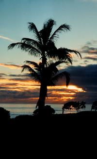 hawaiian sky 2