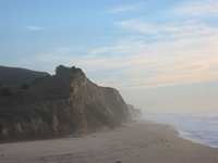 Mist on the pacific coast