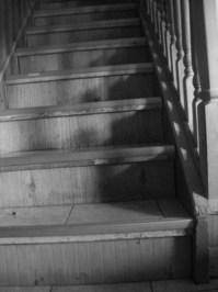 b/w steps