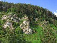 Kobylanska Valley