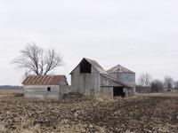 THE OLD FARM 2