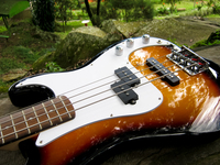 Bass laying