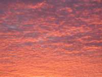 Red Carpet of Clouds