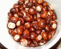 chestnut bucket