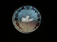 Stainglass Dove 1