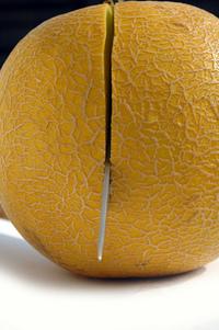 Melon serie 22